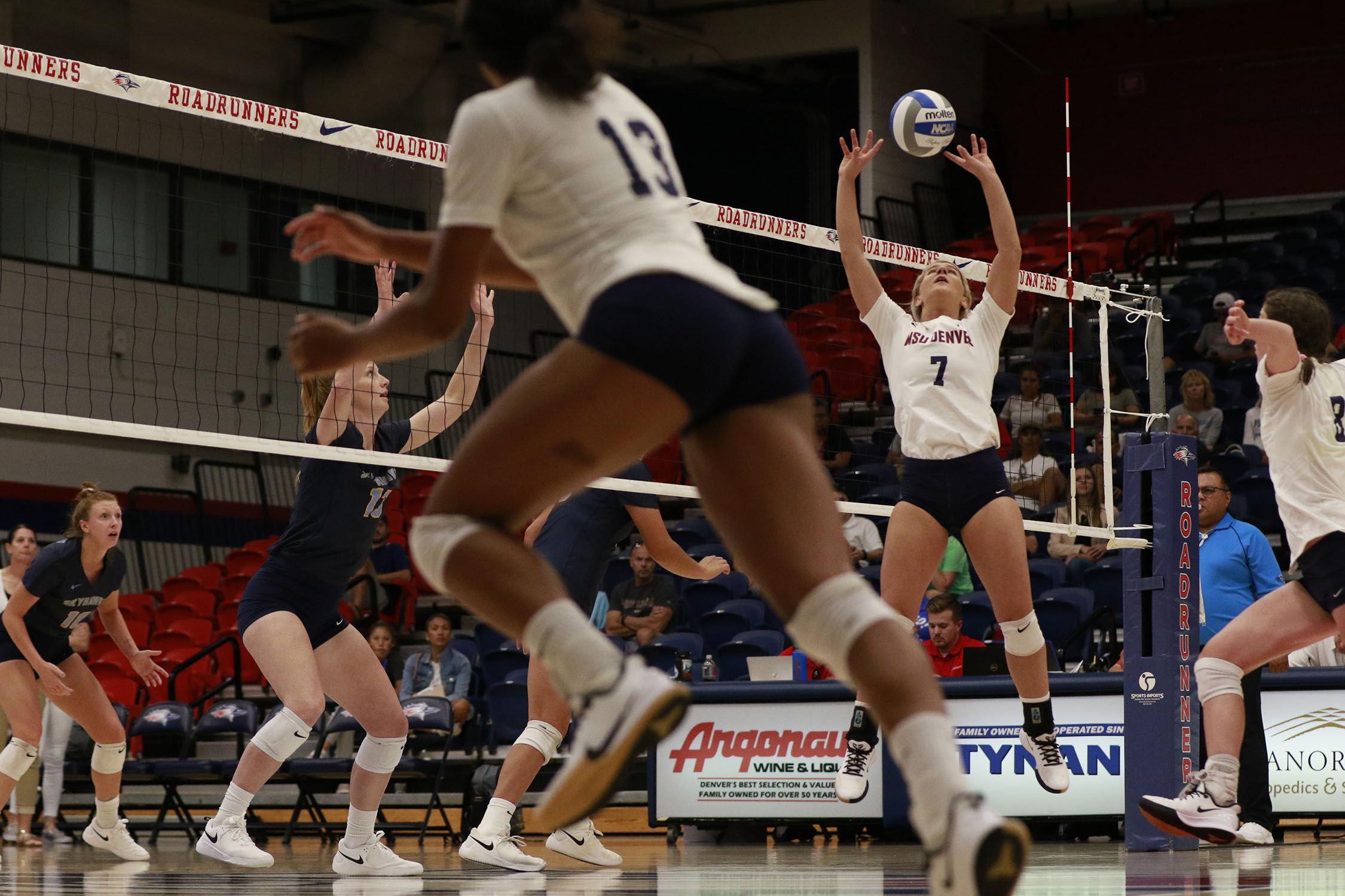 Msu Denver Volleyball Off To Perfect Start In Conference Play